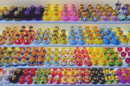 my stories amsterdam duck store