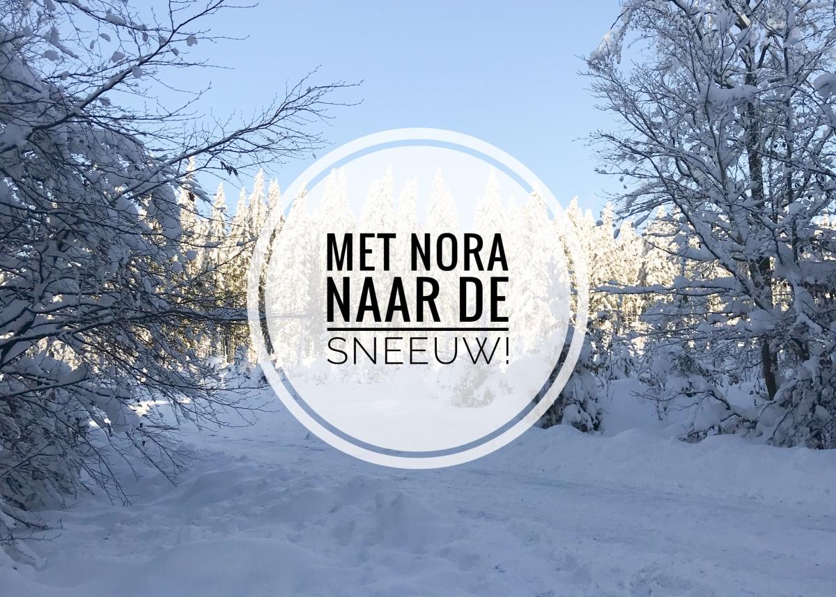 Met Nora naar desneeuw!